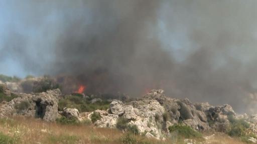 Antalya'da makilik alandaki yangın