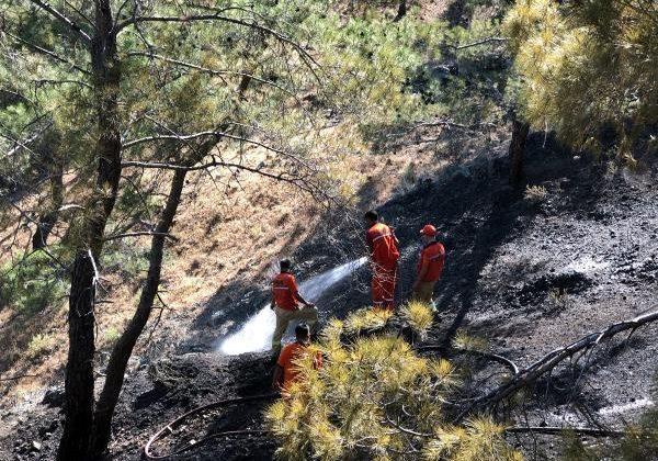Antalya'da orman yangını büyümeden kontrol altına alındı