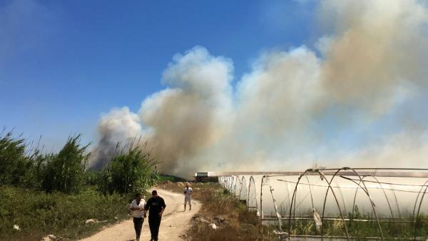 Antalya'da sazlık yangını/ Ek fotoğraflar