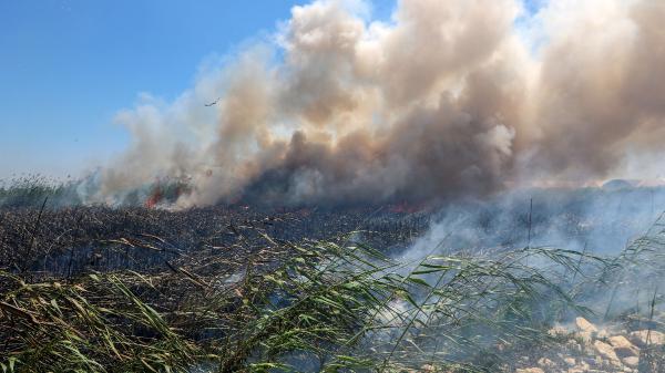 Antalya'da seraların yakınındaki sazlık yangını 3 saatte söndürüldü (2) – Yeniden