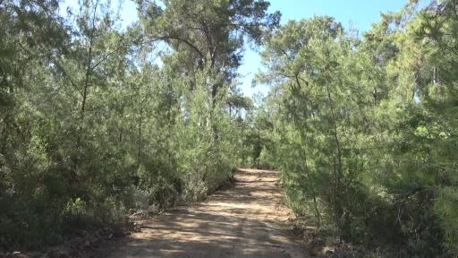 Antalya'nın Alanya ilçesinde, eşi tarafından boğularak öldürülüp kepçe yardımıyla boş araziye gömülen Aslı Öztürk'ün (36) gömüldüğü arazi görüntülendi.