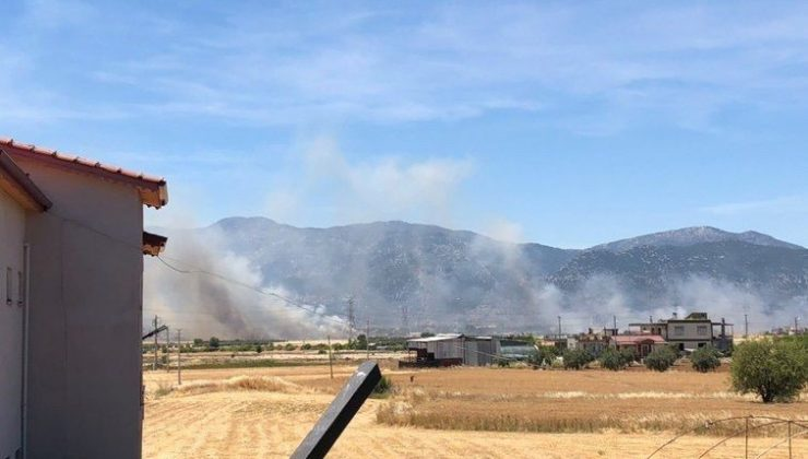 Buğday tarlasında çıkan yangın 30 dönümden fazla ekili alanı küle çevirdi