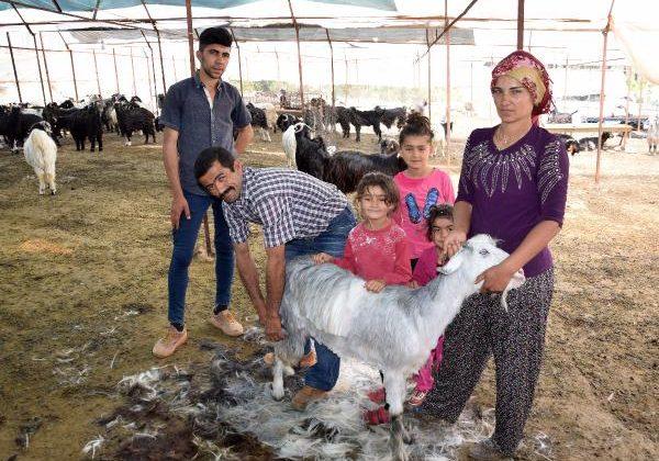Çoban ailenin göç hazırlığı