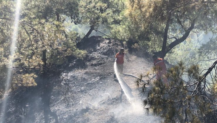 Kemer'deki orman yangını büyümeden söndürüldü