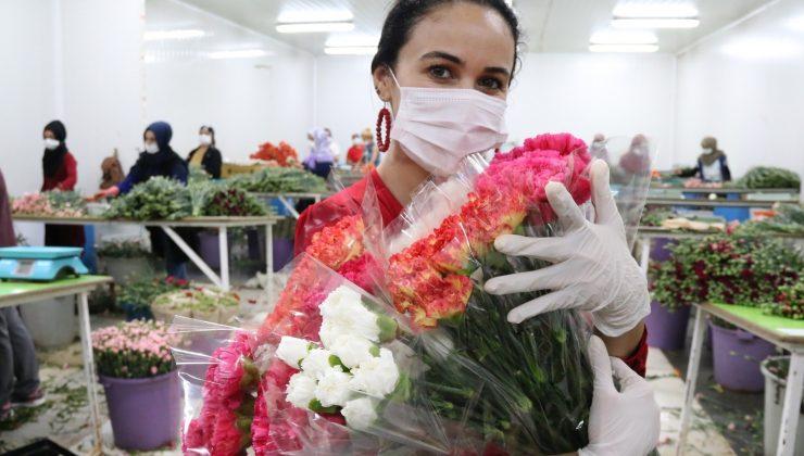 Kesme çiçek sektörü pandemi krizini fırsata çevirdi