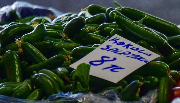 Kilosu 60 kuruşa düşen salatalık, pazarda 8 liradan alıcı buldu