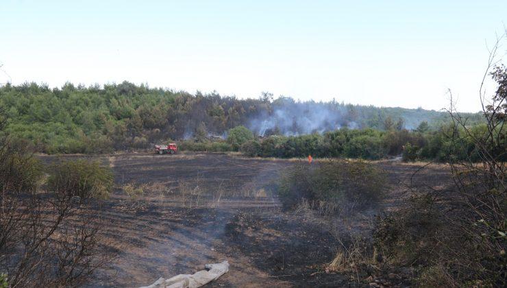 Ormanlık alanda çıkan yangın 10 dönüm arpa ekili alanı küle çevirdi
