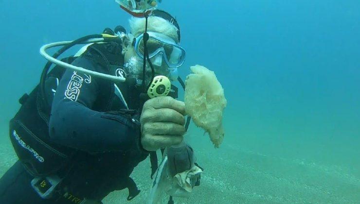 (Özel) Tam kapanma deniz canlılarına nefes oldu