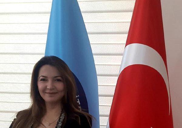 Profesör Sert'in projesine uluslararası destek