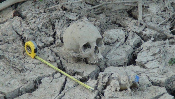Sürmeye hazırlandığı tarlasında kafatası buldu
