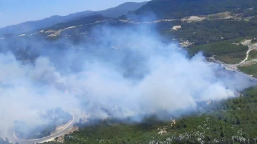 Antalya Akseki'de orman yangını