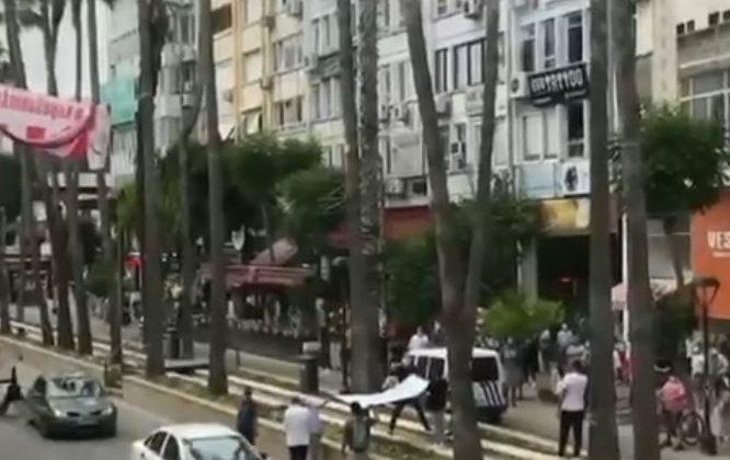 Antalya'da 20 metre uzunluğunda palmiye ağacına çıkan kedi vatandaşların açtığı brandaya düştü