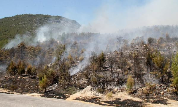 Antalya'da orman yangını çıktı, karayolu ulaşıma kapatıldı / Ek fotoğraf
