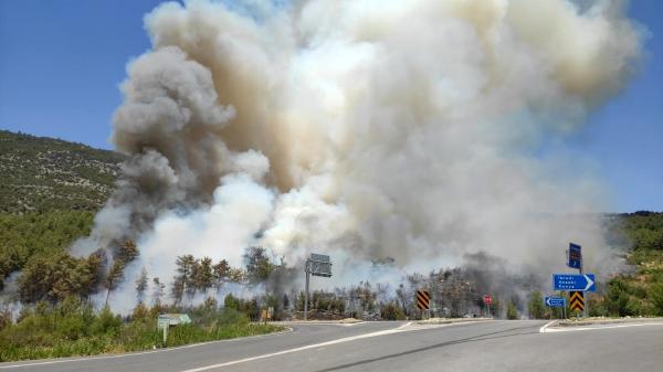 Antalya'da orman yangını çıktı, karayolu ulaşıma kapatıldı