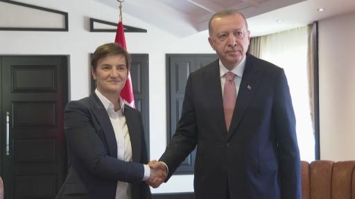 Cumhurbaşkanı Erdoğan, Sırbistan Başbakanı Ana Brnabic'i kabul etti