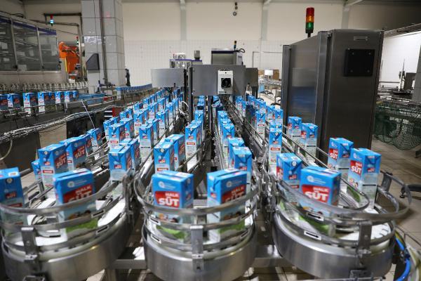 Halk Süt kapsamında 565 bin litre süt dağıtıldı