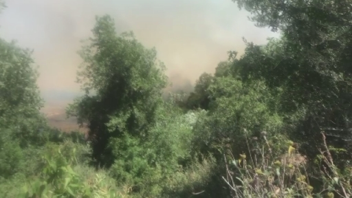 Harabe dükkanda çıkan yangın, ormanlık alana doğru ilerliyor