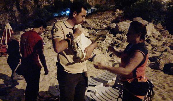 Kanyonda yaralı bulunan yavru dağ keçisine tedavi