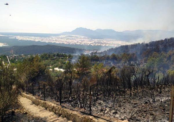 Kaş'ta orman yangını (3)