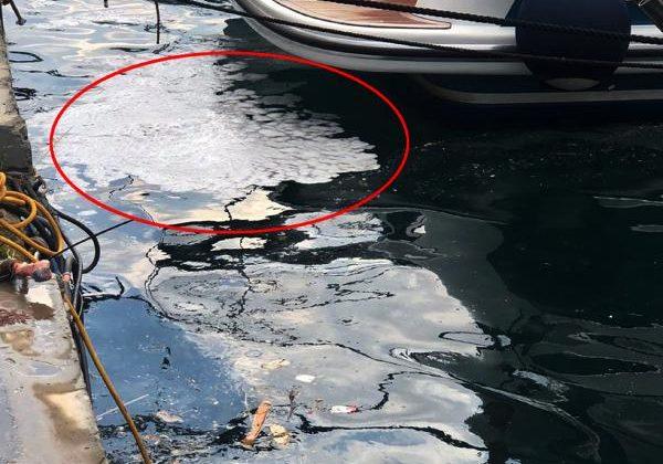 'Marmara 5 yılda temizlenebilir'/ Ek fotoğraf