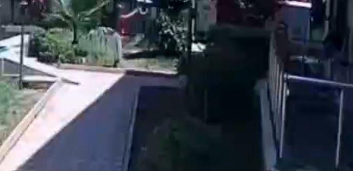 Site bahçesinde bulunan kediyi defalarca havaya atarak yere düşürdü