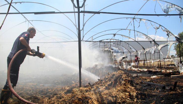 Süs bitkileri serasındaki yangın korkuttu