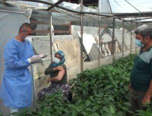 Üretici çift için 50 kilometre yol gidip serada aşı yaptılar