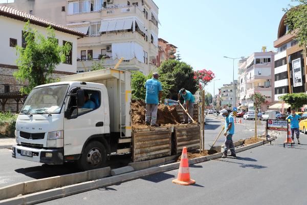 Yeni prestij caddesi zakkum çiçeği ile renkleniyor