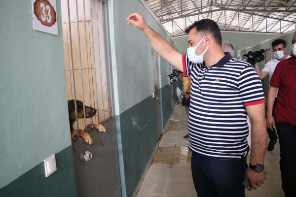 Alanya Belediye Başkanı: Art niyetli insanlar, hayvan rehabilite merkezimizi kötülüyor