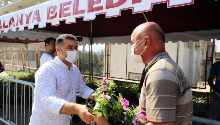 Alanya'da 29 mezarlıkta 61 bin adet çiçek fidesi dağıtılacak