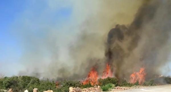 Döşemealtı'nda korkutan çalılık yangını
