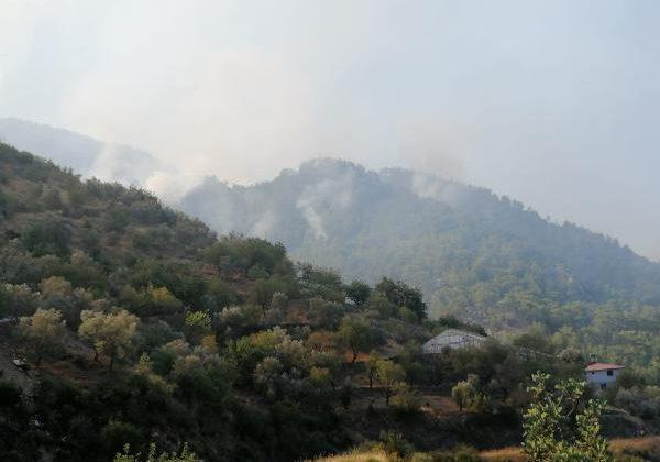 Gazipaşa'da 4 farklı noktada orman yangını (2)