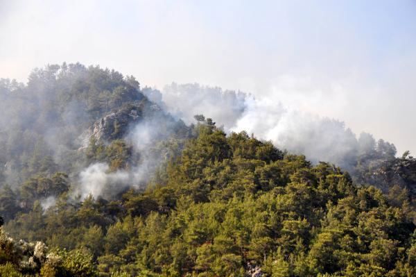 Gazipaşa'da 4 farklı noktada orman yangını/ Ek fotoğraflar