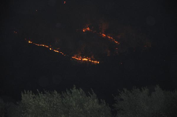 Gazipaşa'da 4 farklı noktada orman yangını