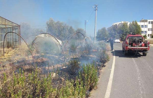 Gazipaşa'da otluk yangını