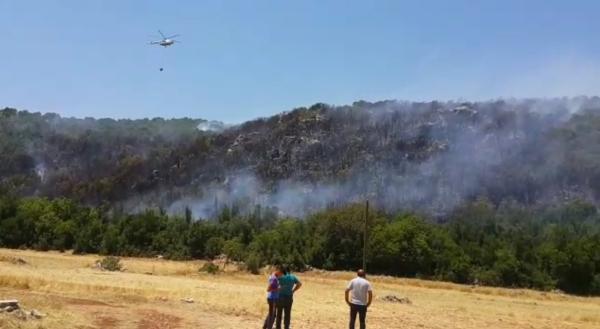 Kaş'ta orman yangını; 3 hektar alan zarar gördü