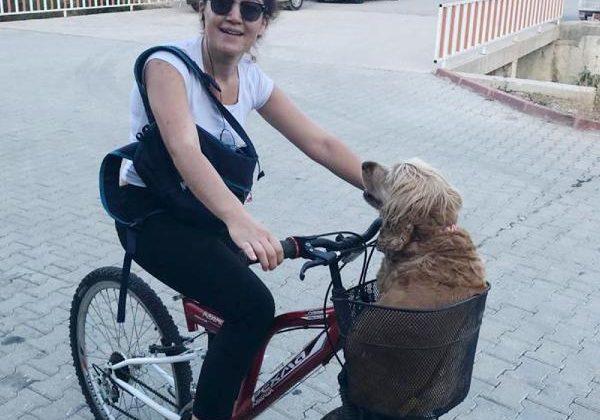 Köpeği Kiraz'ın, yaşamadıkları eve girişi yasaklandı