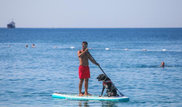 Köpeği 'Misha'ya cankurtaran eğitimi veriyor