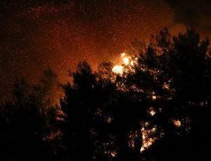 Manavgat'ta 4 ayrı noktada orman yangını (17)
