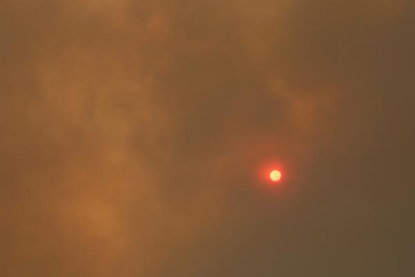 Manavgat'ta 4 ayrı noktada orman yangını (6)