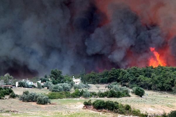 Manavgat'ta 4 ayrı noktada orman yangını / Ek fotoğraf