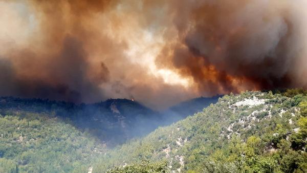 Manavgat'ta 4 noktada orman yangını (2) – Yeniden
