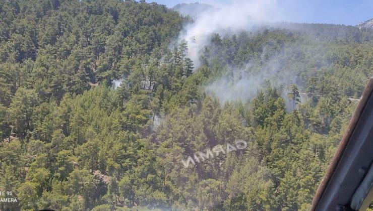 Manavgat'ta çıkan yangında 2 dönümlük kızılçam ormanı zarar gördü