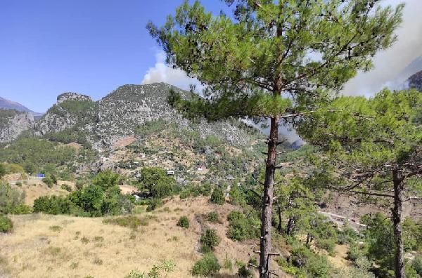 Manavgat'taki büyük yangın 3'üncü gününde (14)