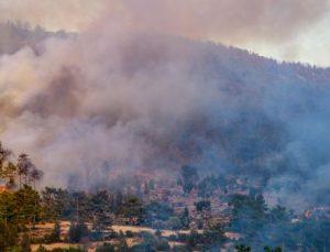 Manavgat'taki büyük yangın 3'üncü gününde (18)