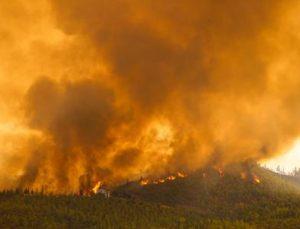Manavgat'taki büyük yangın 3'üncü gününde / Ek fotoğraf
