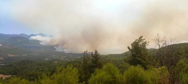 Manavgat'taki büyük yangın 4'üncü gününde (2)