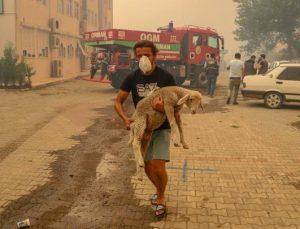 Manavgat'taki büyük yangında 2'nci gün; 3 ölü / Ek fotoğraflar