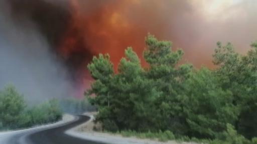 Manavgat'taki orman yangını büyüyor