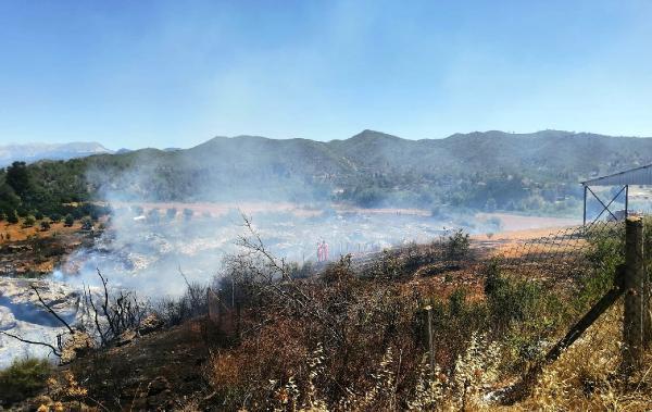 Serik'te çalılık yangını